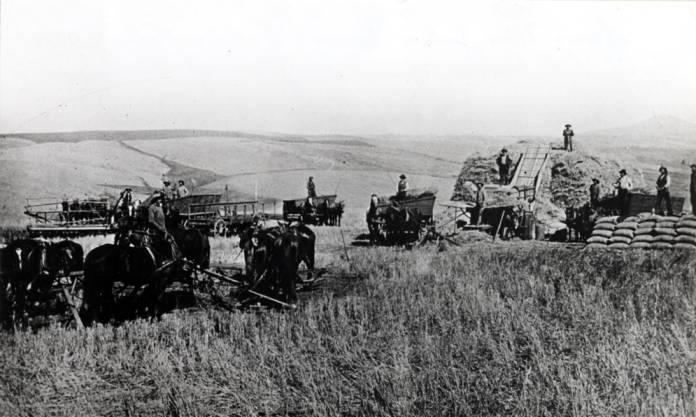 item thumbnail for Horsepower threshing southwest of Steptoe Butte in background