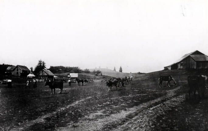 item thumbnail for Agricultural scene southeast of Moscow