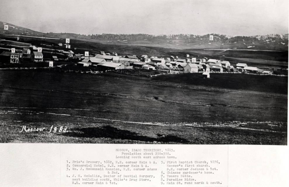 item thumbnail for Moscow, Idaho Territory circa 1883 [02]