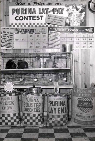 item thumbnail for Washburns Farm Store hen display