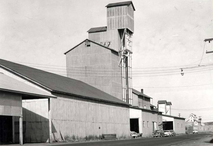 item thumbnail for New Washburn-Wilson Seed Company building for receiving four types of peas without causing mixtures
