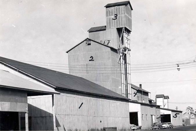 item thumbnail for Washburn-Wilson Seed Companypea processing plant, circa 1960