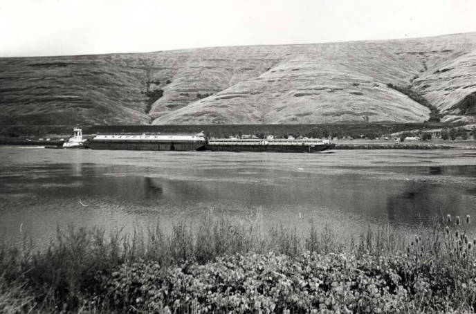 item thumbnail for Tugboat on Snake River [03]
