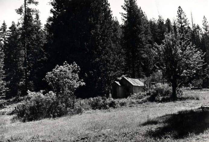 item thumbnail for Gold Creek area, site of Post Office