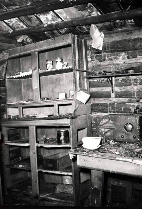 item thumbnail for Shattuck cabin, showing cabinets and antique radio