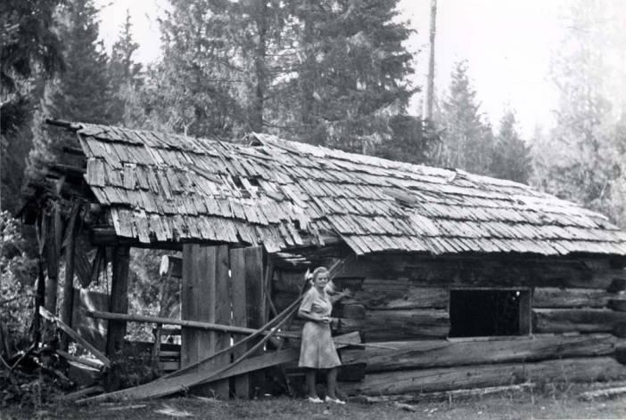 item thumbnail for Log cabin in the Hoodoos [01]