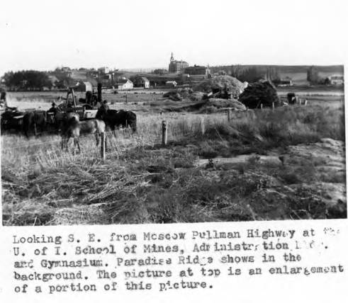 item thumbnail for Looking southeast from Moscow-Pullman Highway [02]
