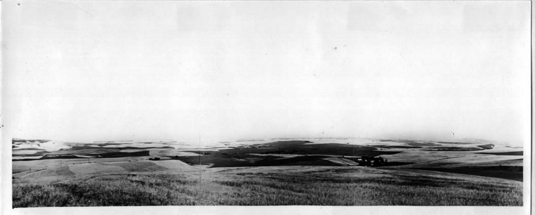 item thumbnail for Stevens Spring, from a panoramic image
