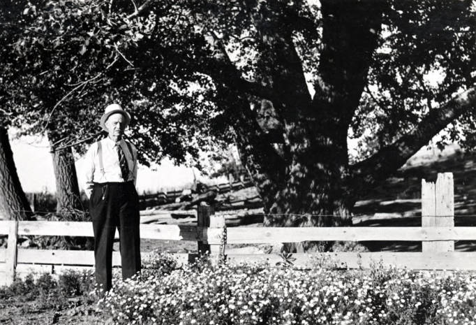 item thumbnail for George M. Tomer stands under a tree his father planted in Latah County, Idaho