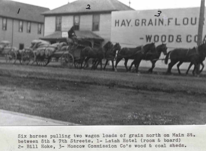 item thumbnail for Six horses pulling two wagon loads of grain north on Main Street between Eighth and Seventh streets