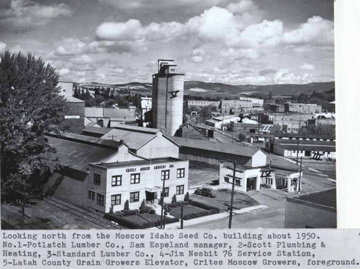 item thumbnail for Looking north from the Moscow Idaho Seed Company building about 1950