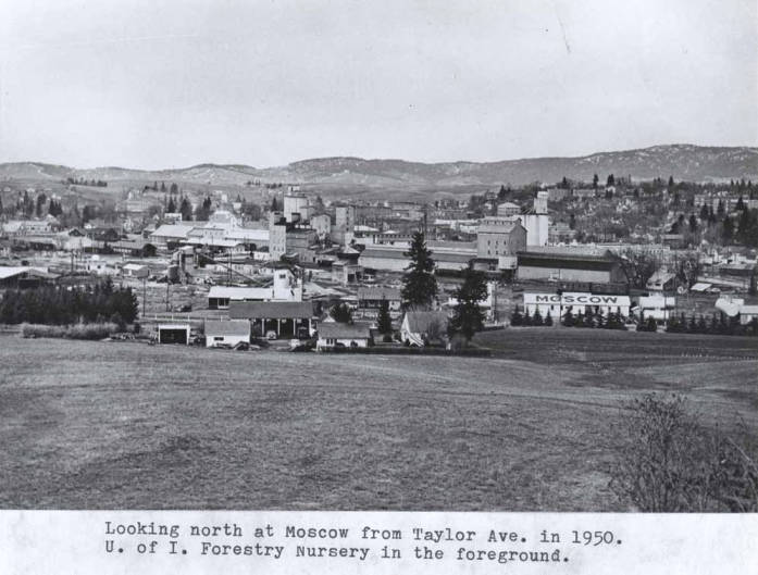 item thumbnail for Looking north at Moscow from Taylor Avenue in 1950