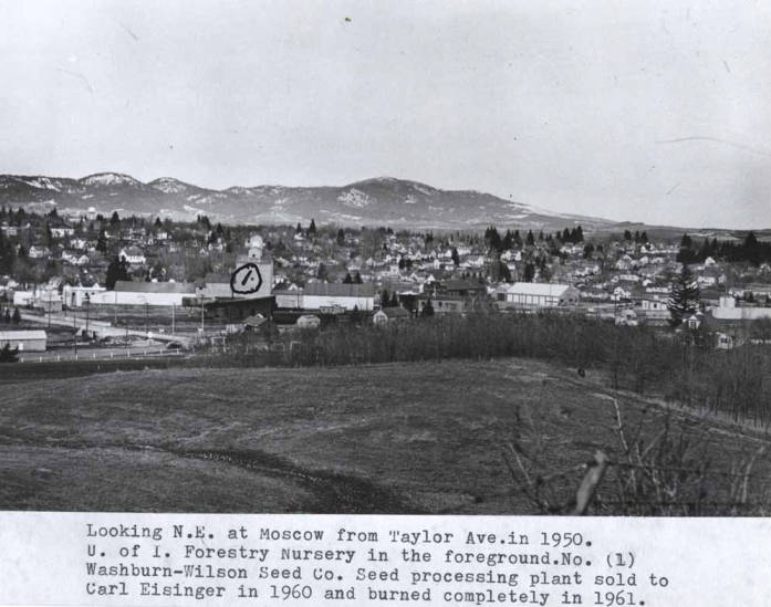 item thumbnail for Looking northeast at Moscow from Taylor Avenue in 1950 [03]