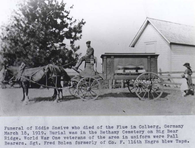 item thumbnail for Funeral of Eddie Snieve, showing horse-team and hearse