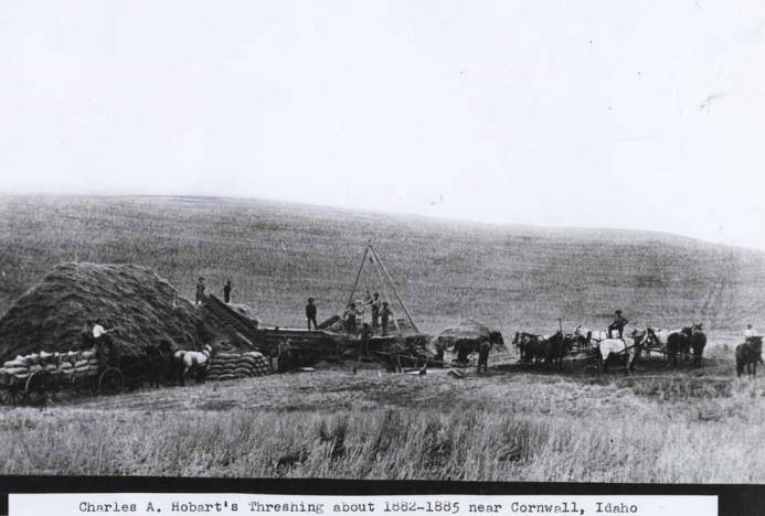 item thumbnail for Charles A. Hobart's threshing outfit