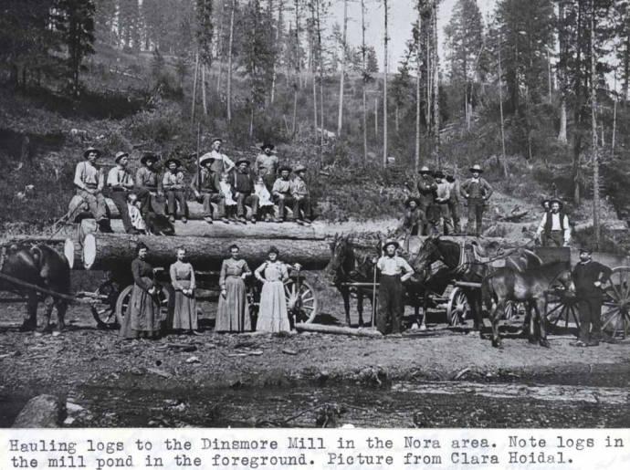 item thumbnail for Hauling logs