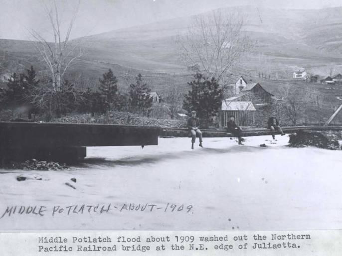 item thumbnail for Middle Potlatch flood