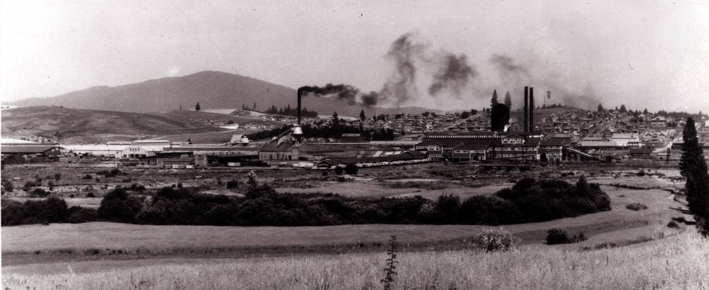 item thumbnail for Potlatch Lumber Company mill during operation