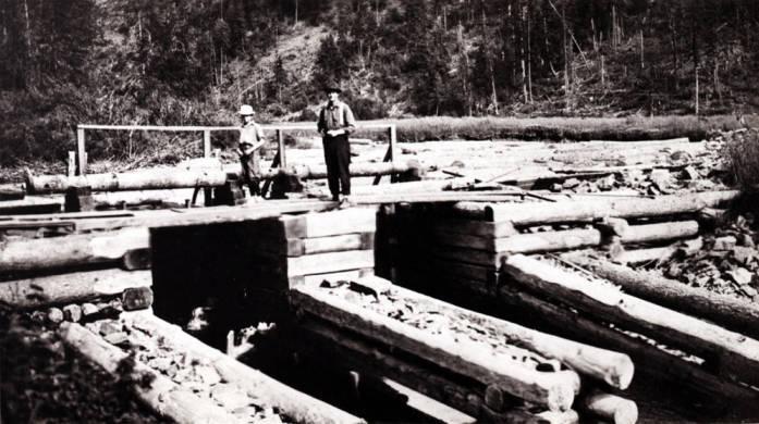 item thumbnail for Potlatch Lumber Company dam in Potlatch