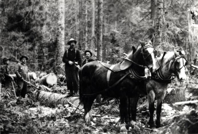 item thumbnail for Lumberjacks with team of horses