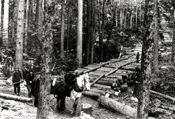 item thumbnail for Logging scene near Moscow