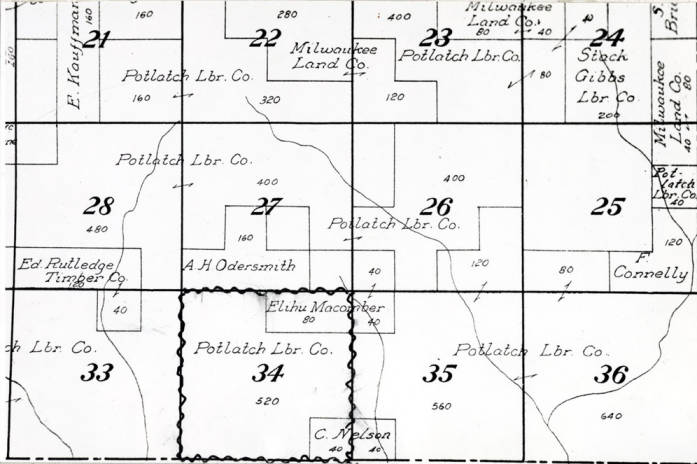 item thumbnail for Photo of map section showing plots and their listed holders