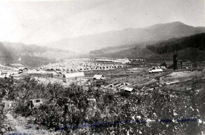 item thumbnail for Potlatch Lumber Company mill in Elk River