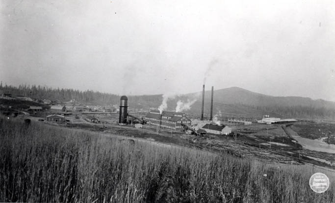 item thumbnail for Elk River and Potlatch Lumber Company mill