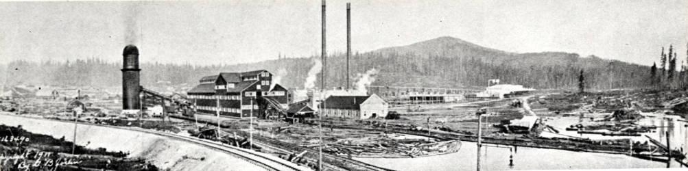 item thumbnail for Sawmill at Elk River