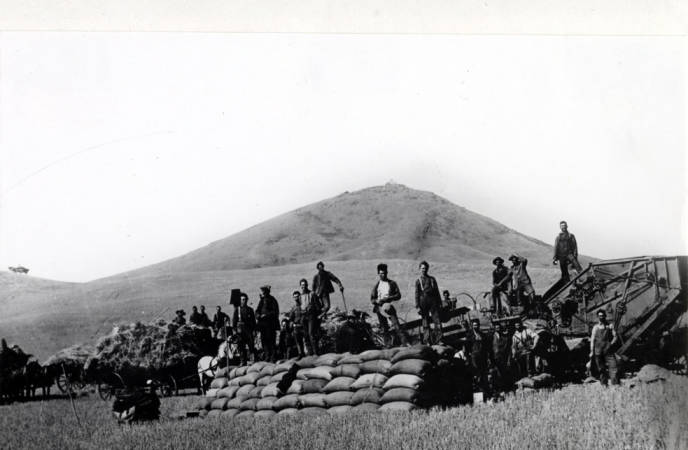 item thumbnail for Looking west at threshing outfit east of Steptoe Butte