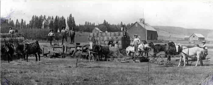 item thumbnail for Baling hay on the Joe Tobin farm