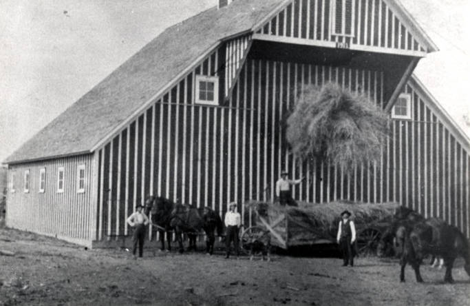 item thumbnail for Unloading hay into barn with slings