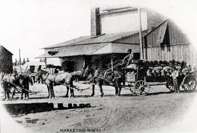 item thumbnail for Six-horse wagon load of grain  south of Sixth Street