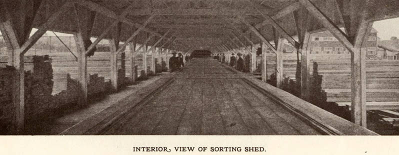 item thumbnail for Sorting Shed Interior