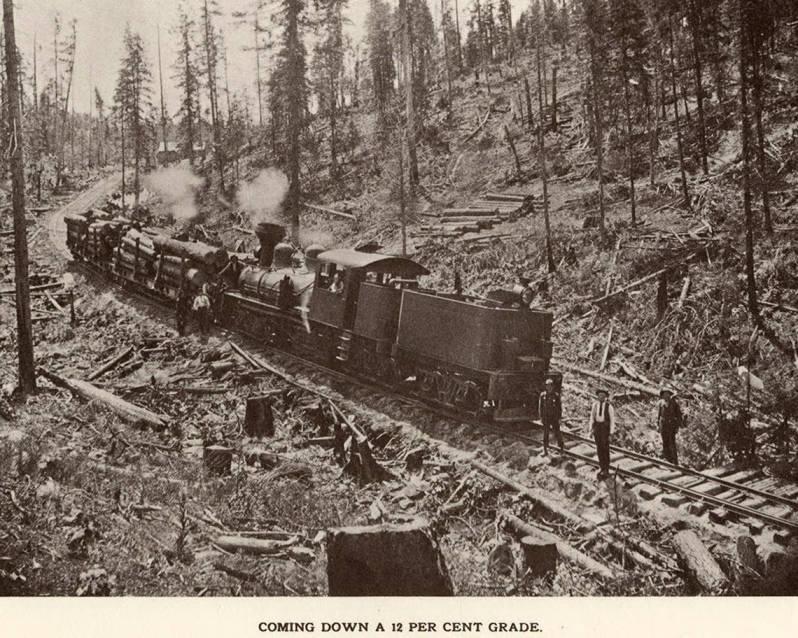 item thumbnail for Log Train