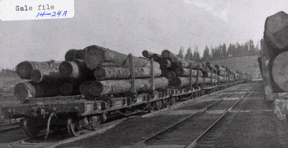 item thumbnail for Logging Train
