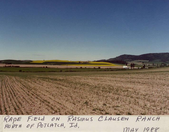 item thumbnail for Rasmus Clausen Ranch