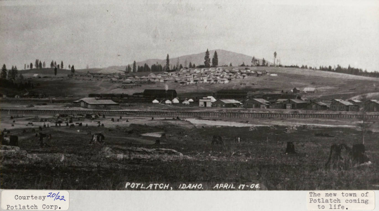 item thumbnail for Growing Potlatch, Idaho