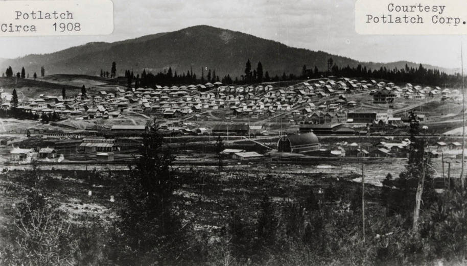 item thumbnail for Potlatch, Idaho Landscape1908