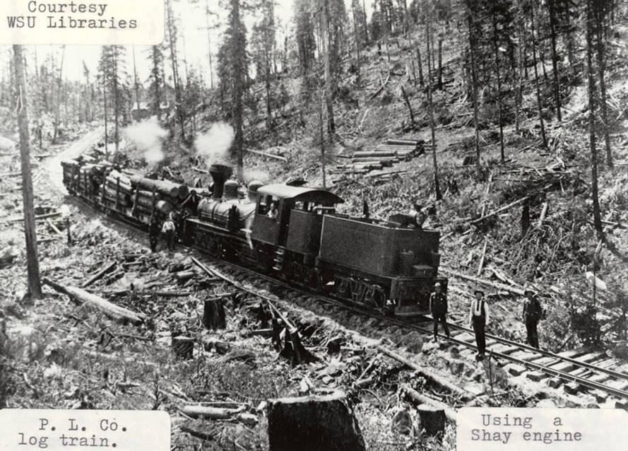 item thumbnail for PLC Log Train