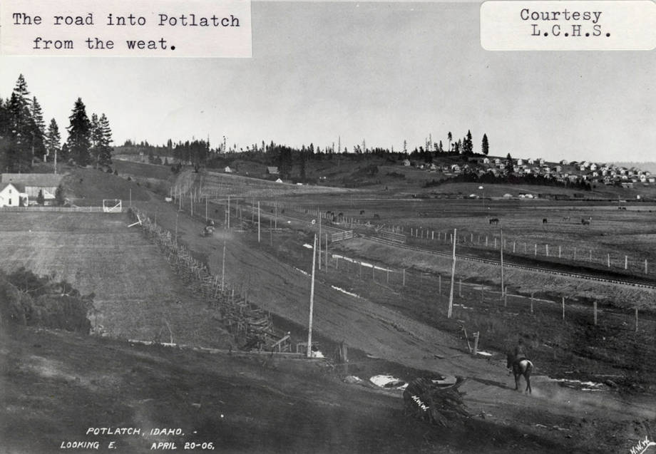 item thumbnail for Road into Potlatch