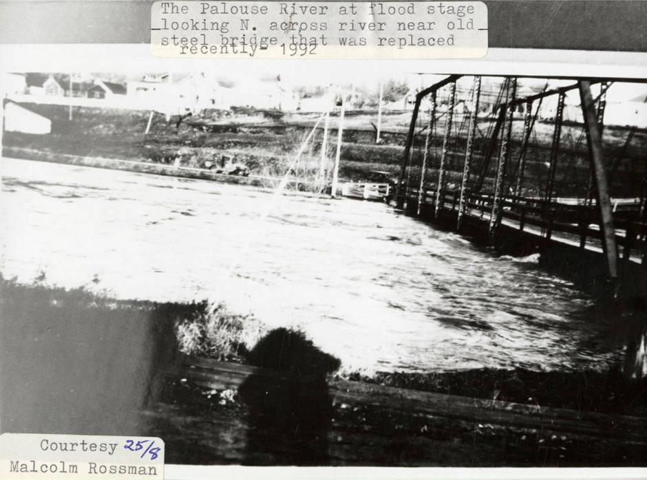 item thumbnail for Flooding Palouse River