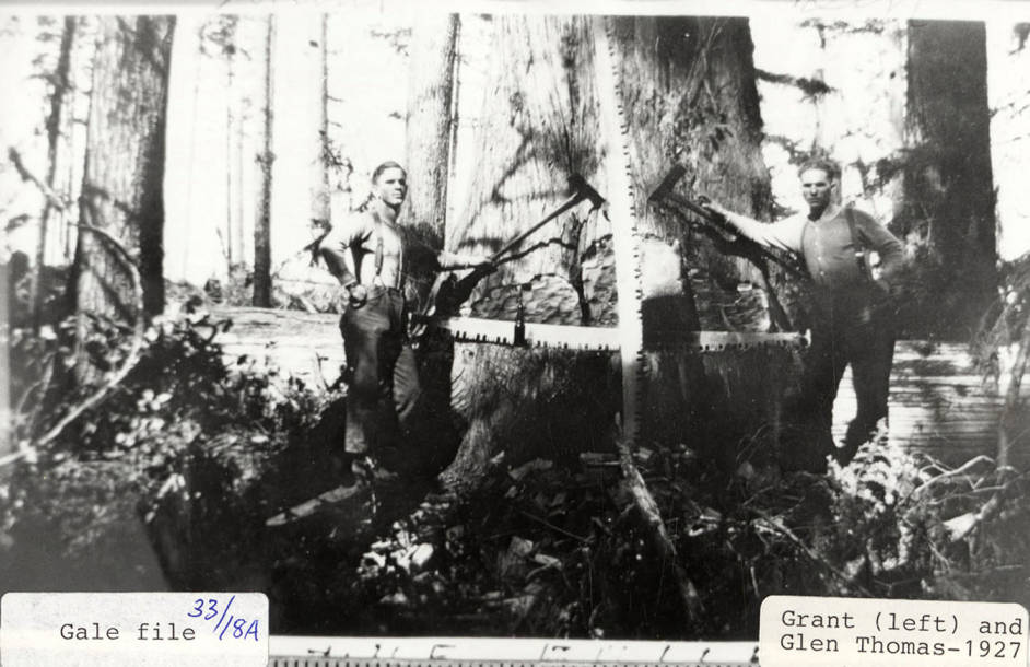 item thumbnail for Logging Crews
