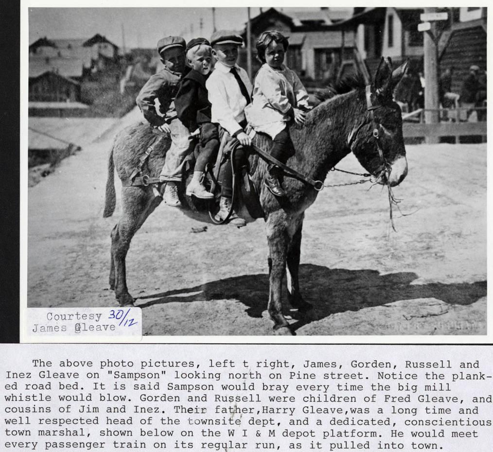 item thumbnail for Children on a Donkey