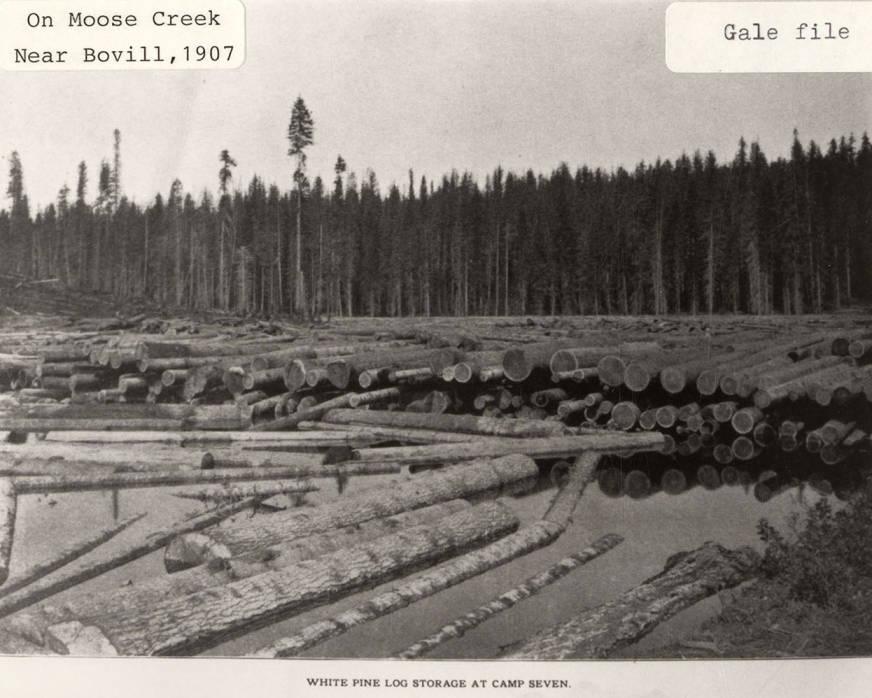 item thumbnail for Log Storage