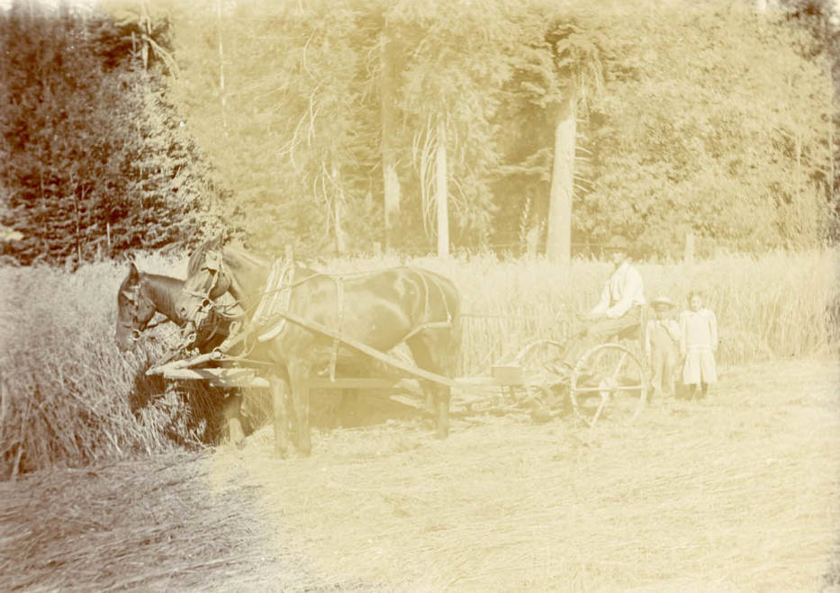 item thumbnail for Charlie , Clara and Eddie Bysegger plowing with horse