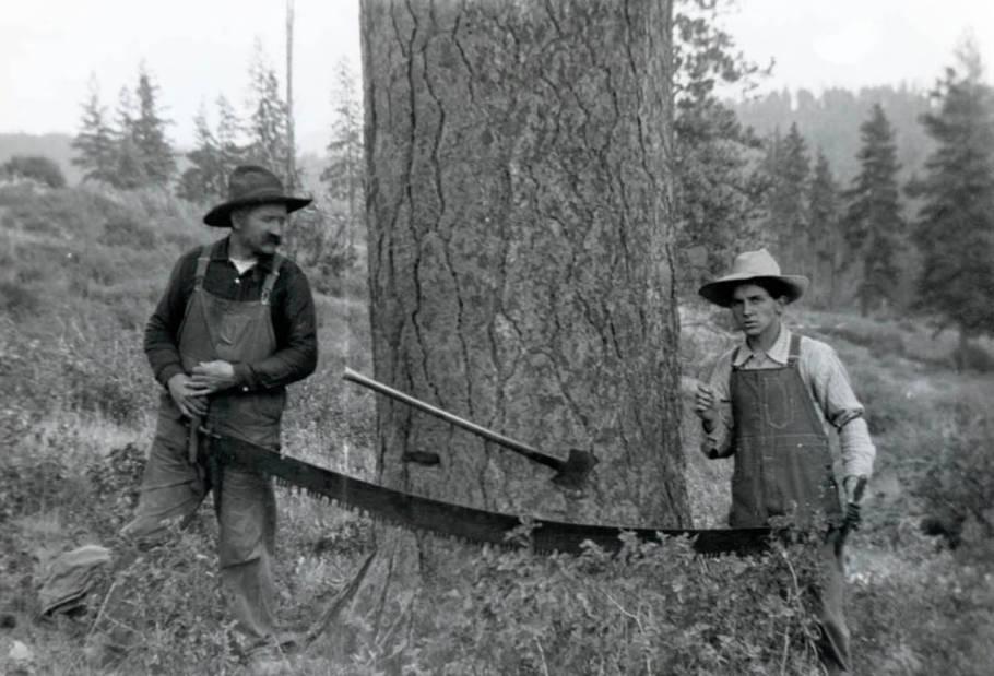 item thumbnail for John and Durell Nirk felling timber (2)
