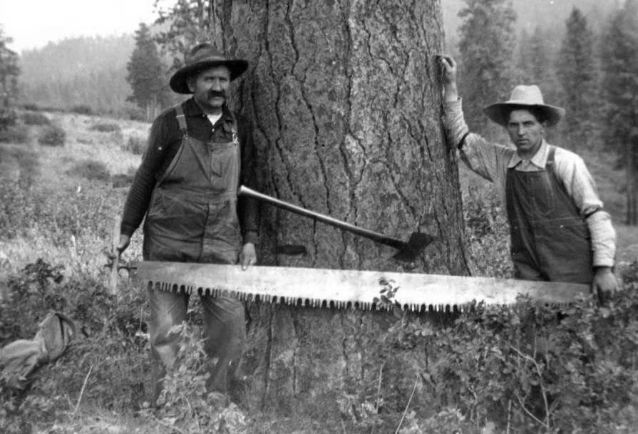 item thumbnail for John and Durell Nirk felling timber
