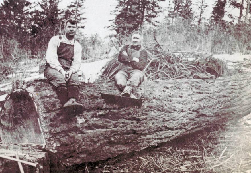 item thumbnail for Men on Felled Log