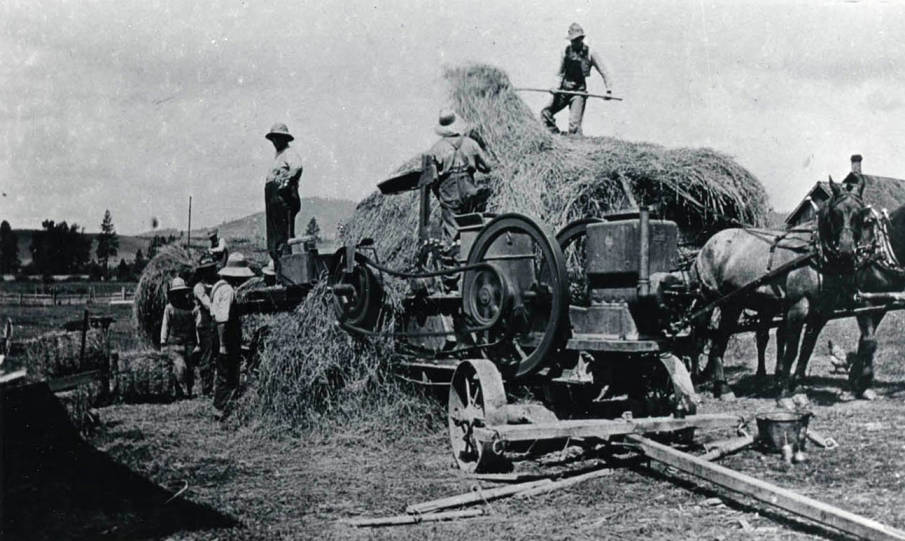 item thumbnail for Baling hay on the Nirk property